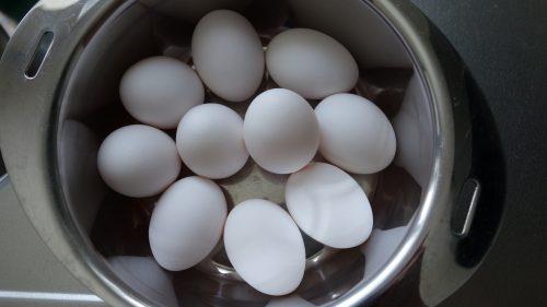 マクロ管理法 タンパク質